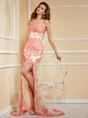 Sheath/Column Straps Sleeveless Sweep/Brush Train Net Dresses with Applique