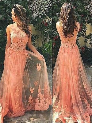 A-Line/Princess Straps Sleeveless Sweep/Brush Train Tulle Dresses with Applique