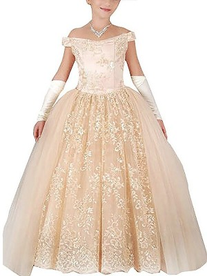 Ball Gown Off-the-Shoulder Sleeveless Floor-Length Tulle Flower Girl Dresses with Applique